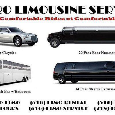 Metro Limousine Service offers transportation using a modern day fleet of stretch limousines and party buses.