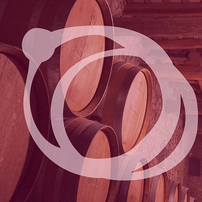Castlexperience Wine Tours