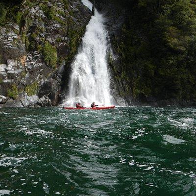 Sea kayaking Pumalin park