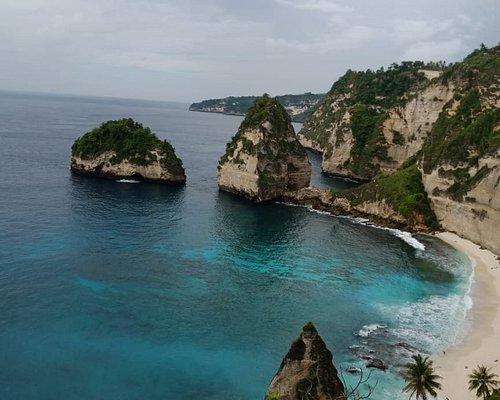 Cheeky Monkey Bali Tour
