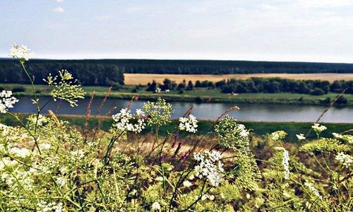 Река Дон, Липецкая область.  Одно из лучших мест по области, да и в городе. К моему сожалению, сам Липецк не оставил впечатлений о своих видах, архитектуре и достопримечательностях. Поэтому, я бы посоветовала посетить область и увидеть эту красоту.