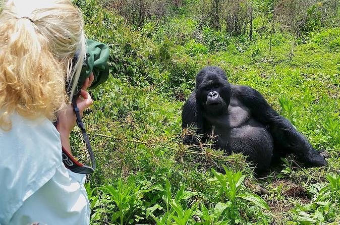 2 DAYS GORILLA TREKKING WITH KIGALI CITY TOUR