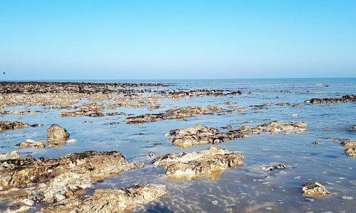 Isle of Thanet