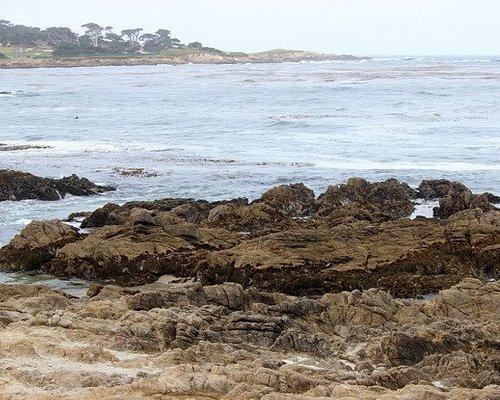 Seal Rock Creek beach