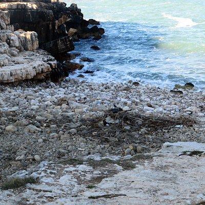 La piccola insenatura ingombra di sassi e anche di sporcizia portata dal mare