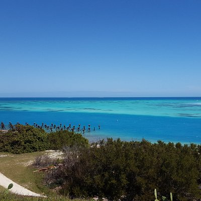 Best snorkeling is around the pylons (saw 4.5 foot barracuda and sting ray)