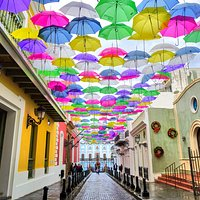 Colorful umbrellas floating above the historic buildings on Calle Fortaleza.
