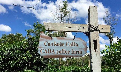 """👉👉Không gian sinh thái của V'Ori đang hoàn thành những công đoạn cuối cùng để sẵn sàng đón những du khách tham quan đầu tiên. 👉""""Con đường cà phê - Cội nguồn cà phê Việt"""" - sản phẩm du lịch từ V'Ori Coffee sẽ chính thức khai trương vào ngày 22/02/2019, quý khách sẽ được trải nghiệm không gian cà phê đặc biệt"""