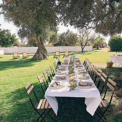 Our table under our 2.000 year-old olive tree in the lawn