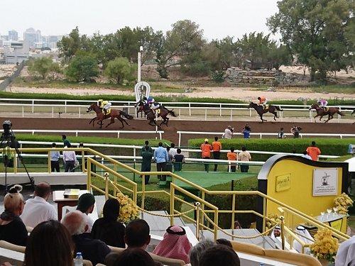 Jebel Ali Racecourse