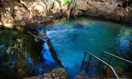 Located at the back of our park on the banks of the Katherine River. This shady, spring fed, thermal pool is an ideal and safe swimming area, great for soaking your tired muscles. The hot springs are well grassed with shady spots and sunbathing areas. Just right for a picnic.