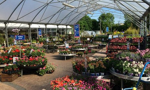 At Fernhill we offer an unrivalled selection of premium plants, shrubs and trees and a wide range of garden accessories and plant care. Our team of experts and horticulturalists are also on hand to offer all our customer free advice and gardening tips.