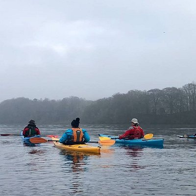 And off they paddle into the fog......