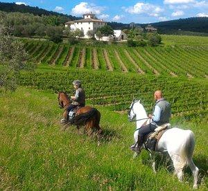 Through the Chianti vineyards near Firenze