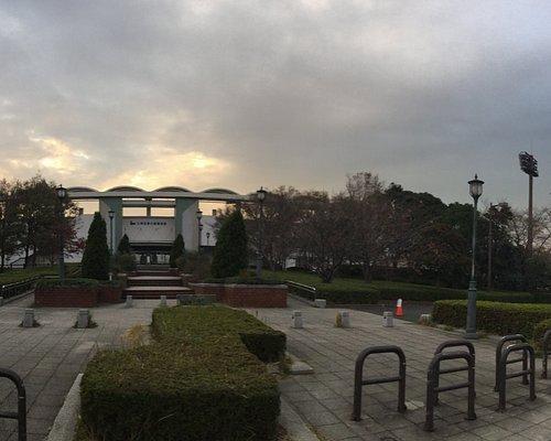 夢の島総合運動場