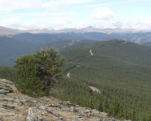 View from Chief Mountain!