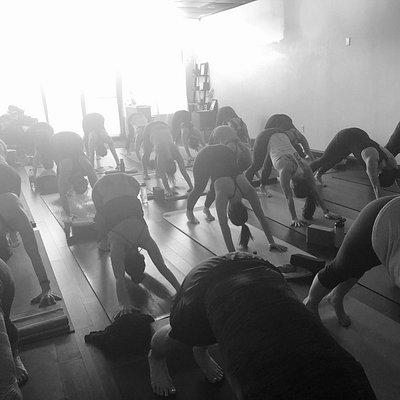 Mind Body Flow Yoga