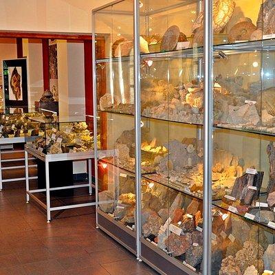 Kolekcja minerałów Ziemi Olkuskiej i Skamieniałości Jury Krakowsko - Częstochowskiej w Olkuszu