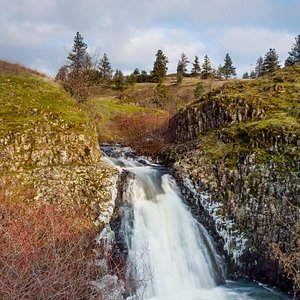 Winter and Spring are the time to visit Catherine Creek... the waterfalls are running and the wildflowers are blooming.