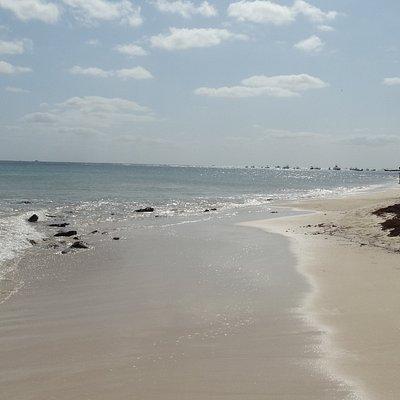 Playa 88