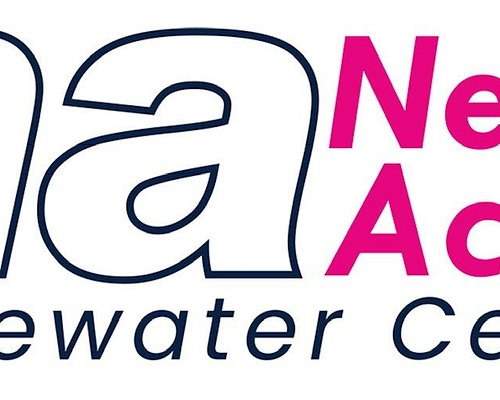 Nene Active Logo