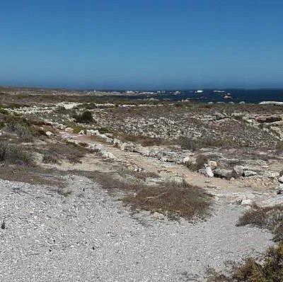 Shelley Bay Beach