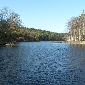Slätta Damm i Hisingsparken i Göteborg
