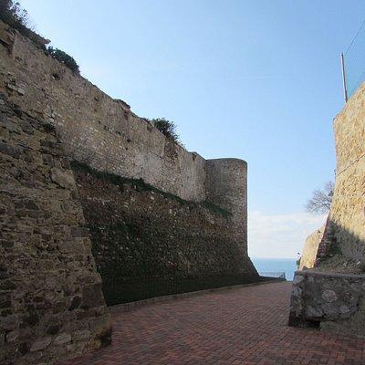 Mura Leonardesche