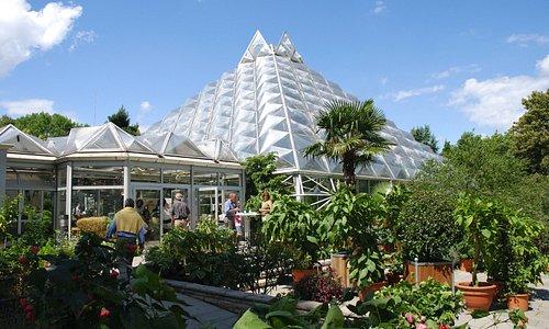 Pflanzenschauhaus