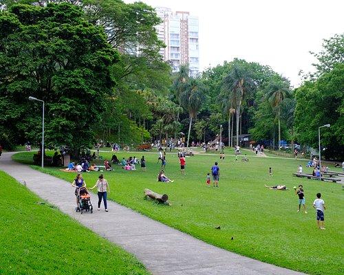 Gramado central do Parque Burle Marx.