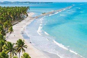 Praia dos Carneiros, em Tamandaré, Pernambuco!