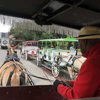 Royal Carriages tour of New Orleans
