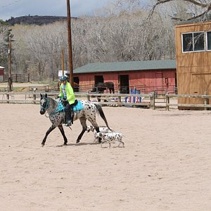 Air Force Academy Stables outdoor arena.