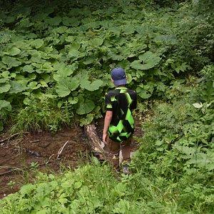 Park Krajobrazowy Gor Slonnych - one of marked trails