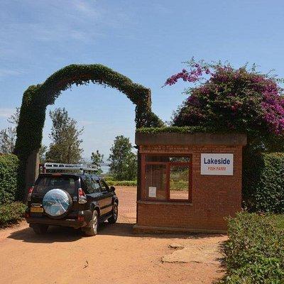 Main gate to the farm