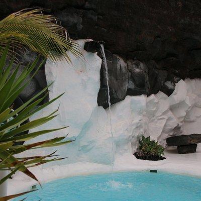A pool garden