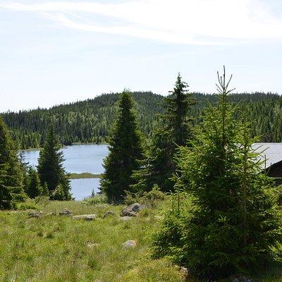 Norge, idylliske Totenåsen. Passer perfekt for lette fotturer i et terreng med skog og mange tjern,