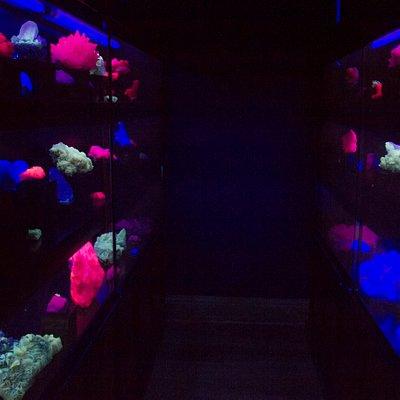 Sala de minerales fluorescentes, que reaccionan con la luz ultravioleta