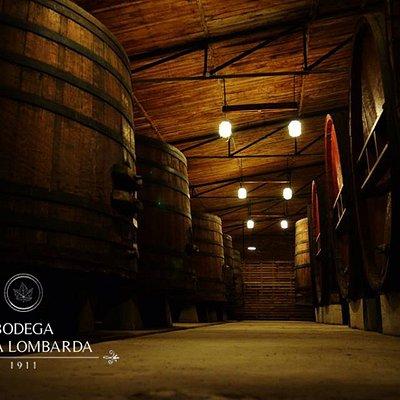 Bodega Terra Lombarda - San Rafael, Mendoza