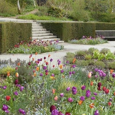 The garden at Castle Drogo during spring.