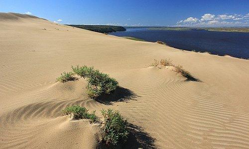 Узоры северной пустыни на Лене 18 000 лет назад. Ледниковый период. В центральной Якутии доминируют обширные Плейстоценовые криопустыни с мамонтами, шерстистыми носорогами, дикими лошадьми и бизонами. В общих чертах на территории Центральной и Восточной Сибири во время ледниковой эпохи климат был настолько сухим и холодным, что сформировались пространства холодных пустынь и обедненных степей, наподобие современных высокогорных пустынь Тибета, Анд, Монголии Мне повезло побывать на таком Тукулане