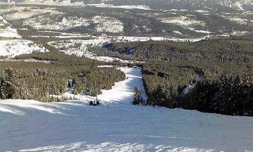 Top of Wapati Ski Hill