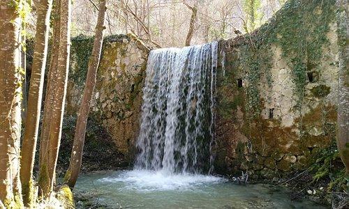 """Natura Incontaminata nel percorso che conduce alla cascata le """" Callarelle """" tra boschi da favola."""