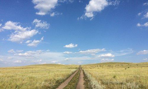 Bei diesem Weg fällt es mir schwer zu sagen, ob es ein Feldweg ist oder vielleicht eine Landstraße. Es ist auch nicht einfach zu sagen, woher er kommt und wohin er geht. Er ist einfach da, genau so wie das Land darum herum einfach da ist. Man kann ihn lange entlang fahren, ohne dass man etwas Neues sieht. Und doch ist man nicht alleine.