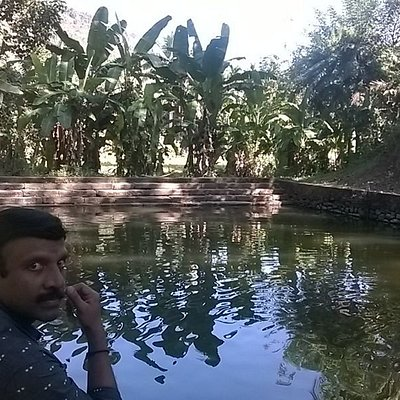 There was a pond in almost all homes in Kerala in earlier times,which catered to the water needs ,home for flaura and fauna too. Cool and refreshing...