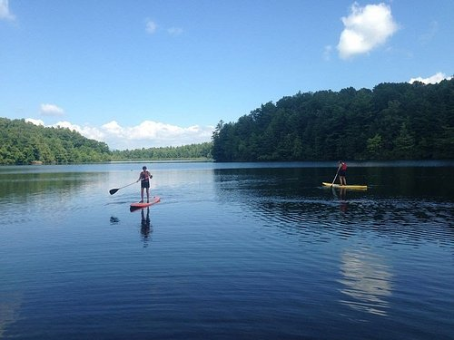 Lake Julia is a 99 acre lake in DuPont State Forest.