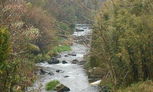 来光川の流れ。分かり難いが、中央部右側にわずかに残された鉄橋の架台が見える