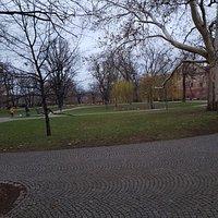 Peaceful park