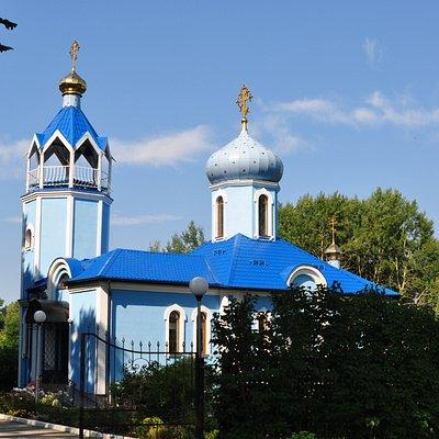 Общий вид храма в Донском
