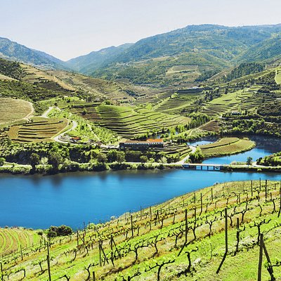 Douro Valley - Oporto Road Trips